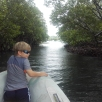 "Passage ""secret"" dans la mangrove"