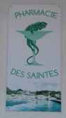 Aux Saintes, il y a des iguanes partout !