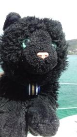 Bob a reçu un galon de Chat ayant la patte marine